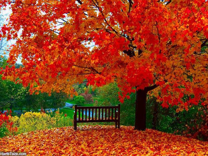 عاشقانه های پاییز