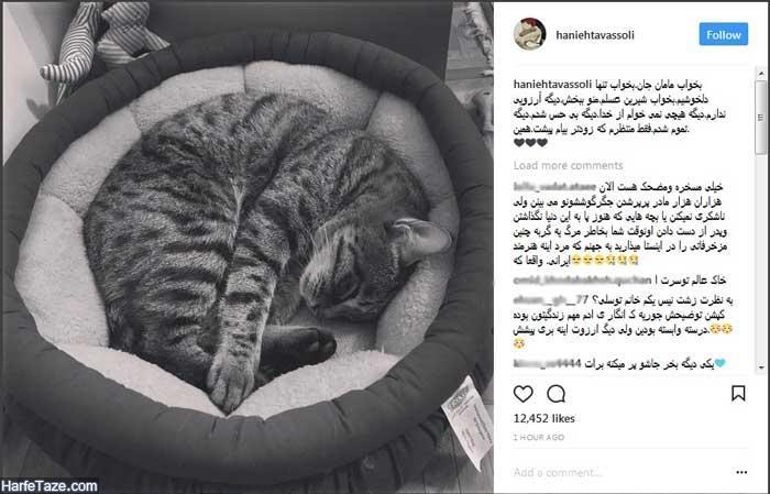گربه هانیه توسلی