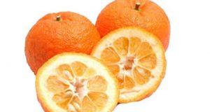 تعبیر دیدن نارنج در خواب