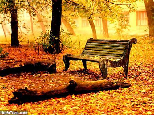 عکس های زیبا در فصل پاییز