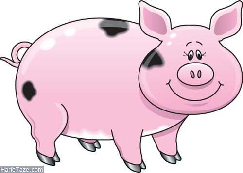 خوک حیوان سال