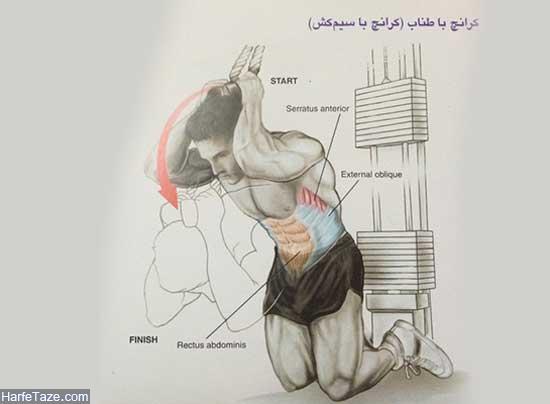 بهترین تمرینات شکم در بدنسازی