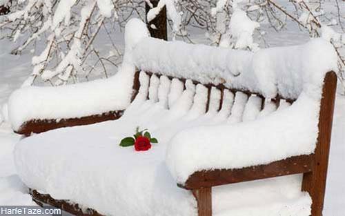 روز برفی