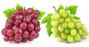 تعبیر دیدن انگور در خواب