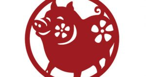 خصوصیات و طالع بینی سال خوک ، فال سال 98