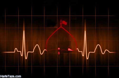 پروفایل ضربان قلب