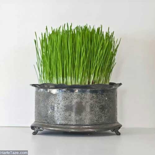 سبزه آرایی هفت سین