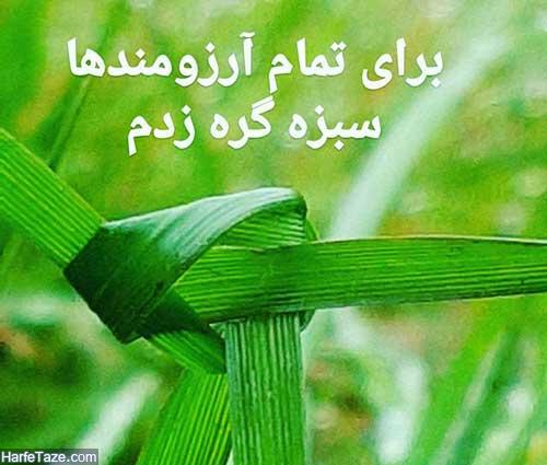 گره زدن سبزه