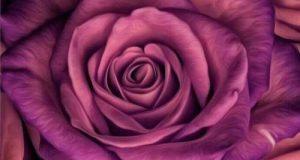22 عکس زیبا و جدید بک گراند گل برای گوشی