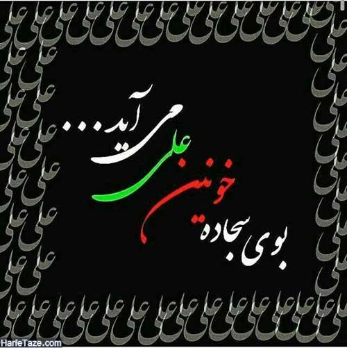 عکس نوشته شب قدر شهادت حضرت علی