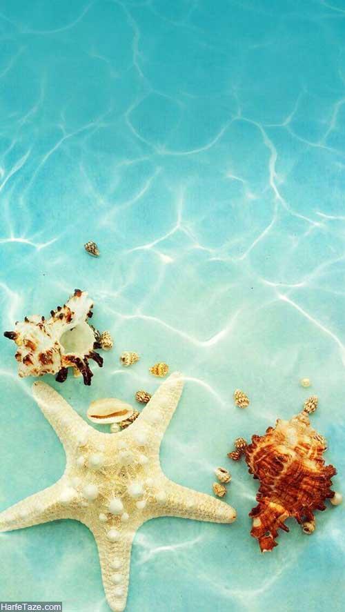 عکس تابستانی مخصوص پروفایل و بکگراند گوشی + اس ام اس گرما و تابستان