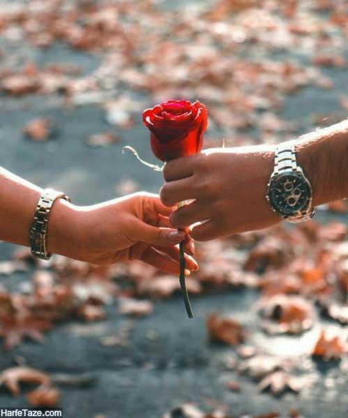 هدیه دادن گل