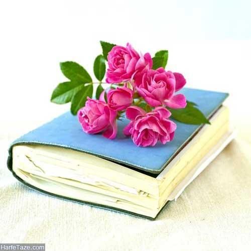پروفایل گل و کتاب