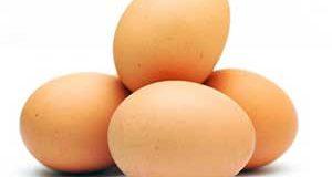 تعبیر دیدن تخم مرغ در خواب