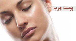 معرفی پوست چرب و بهترین محصولات و ماسک ها برای درمان آن