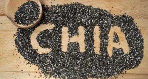 دانه چیا چیست | خواص دانه چیا برای لاغری و سلامتی | رسپی پودینگ چیا