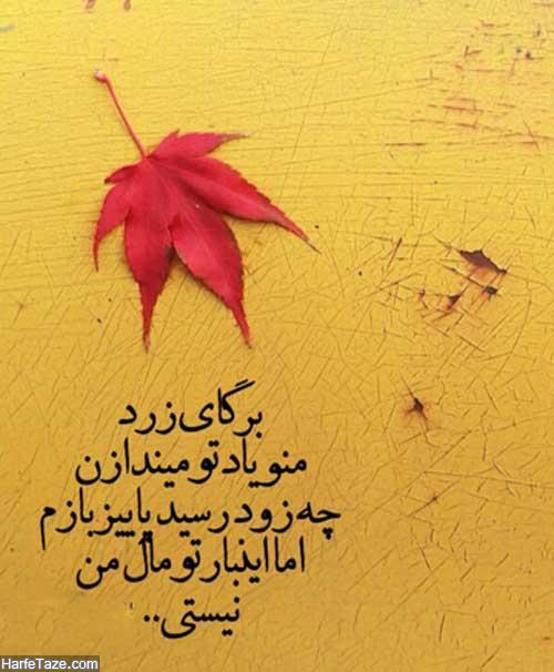 استوری پاییز