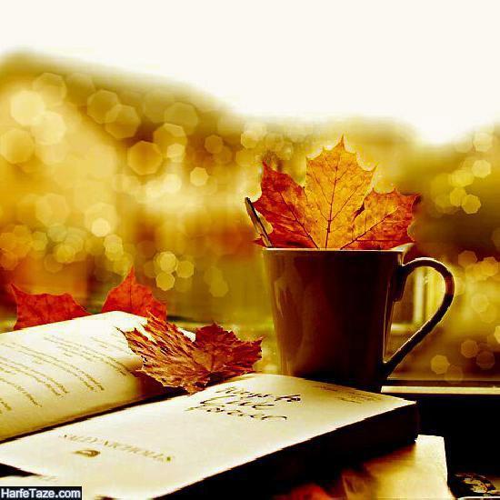 فنجان در پاییز