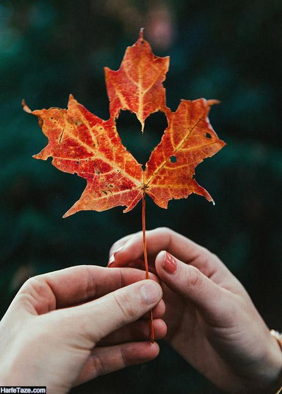 دست با برگ پاییزی