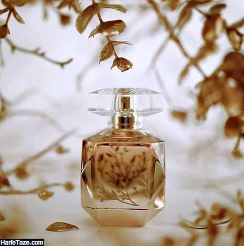 عطر مناسب پاییز و زمستان