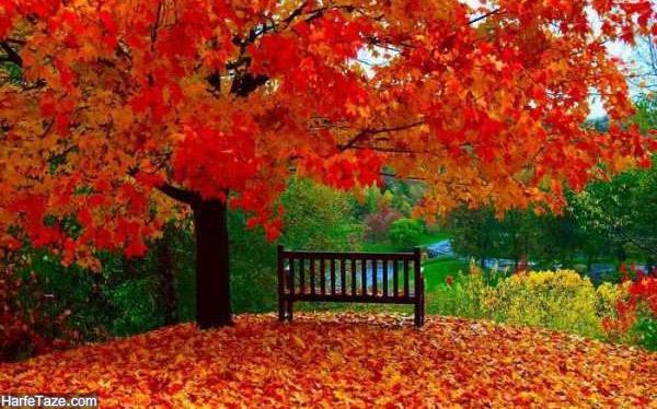 انشا درمورد پاییز