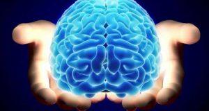 بررسی تاثیر ۱۲ عامل مخرب بر روی مغز و سیستم حیاتی در بلند مدت