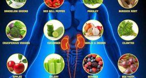 افزایش قدرت و عملکرد کلیه و تقویت کلیه ها با سبزیجات و مواد مغذی