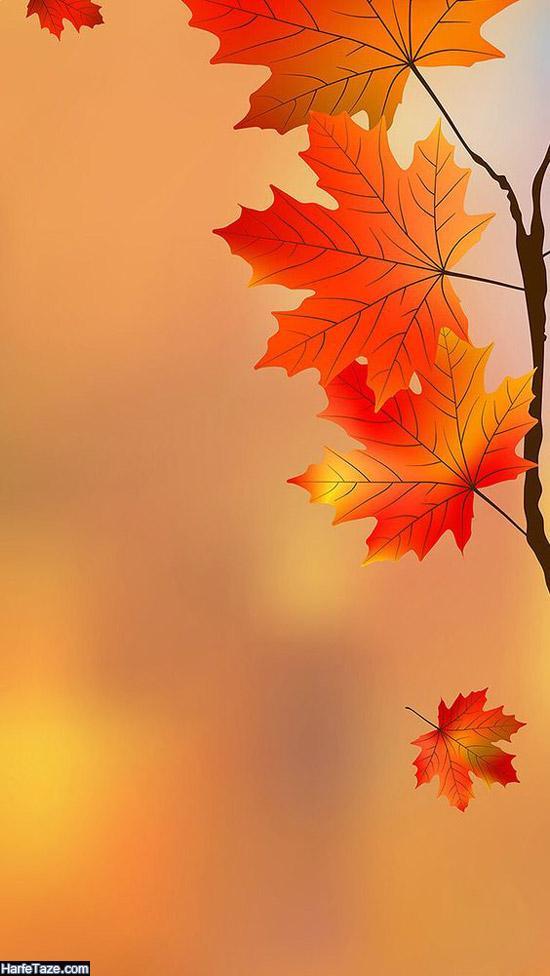 پس زمینه پاییزی