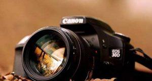 نکات عالی برای عکاسی در پاییز | بهترین ساعات برای عکاسی پاییزی