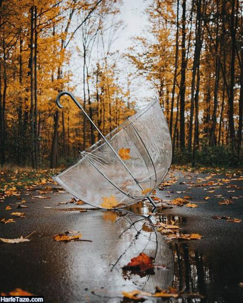 عکس پروفایل چتر