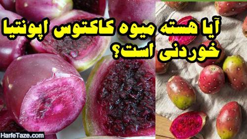 میوه کاکتوس