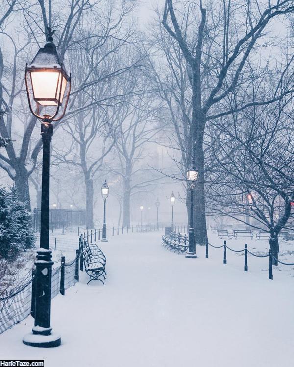 تصاویر طبیعت زمستانی برای بک گراند زمستانی