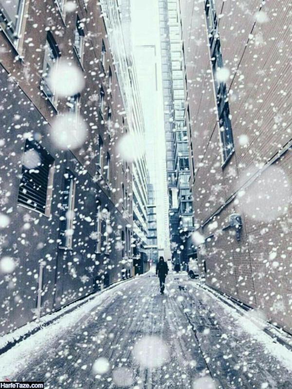 تم موبایل و بک گراند زمستانی