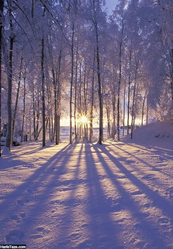 تصاویر زیبای طبیعت زمستانی و برف برای بک گراند زمستانی