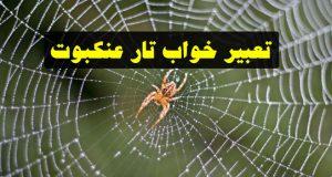تعبیر دیدن تار عنکبوت در خواب