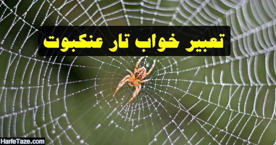 تعبیر خواب تار عنکبوت