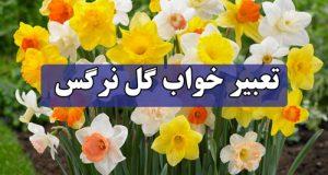 تعبیر دیدن گل نرگس در خواب