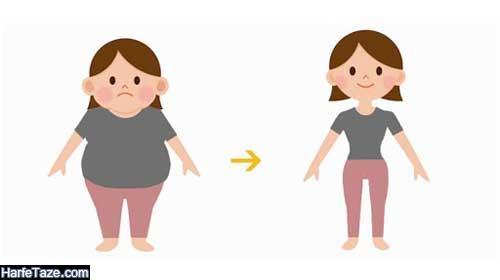 کاهش وزن با بادمجان
