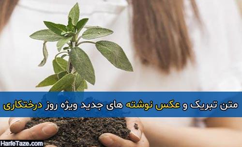 متن تبریک و عکس نوشته های جدید ویژه روز درختکاری – ۹۸