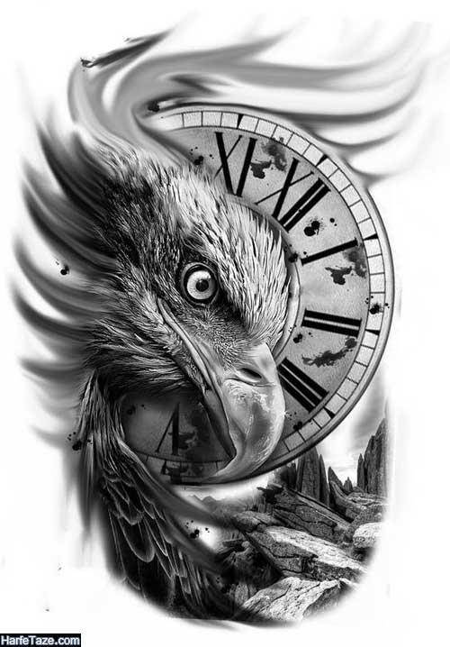 دانلود عقاب سفید با کیفیت full hd