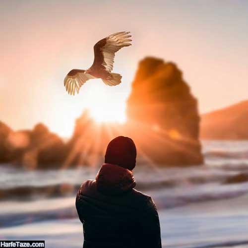 تصویر زمینه عقاب با بال های باز برای موبایل دخترانه