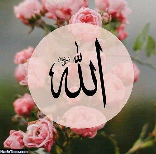 پس زمینه گوشی قرآن و گل