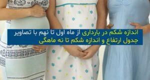 ارتفاع و اندازه شکم در ماههای مختلف بارداری چقدر است؟ + جدول