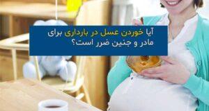 آیا خوردن عسل در بارداری مجاز است؟