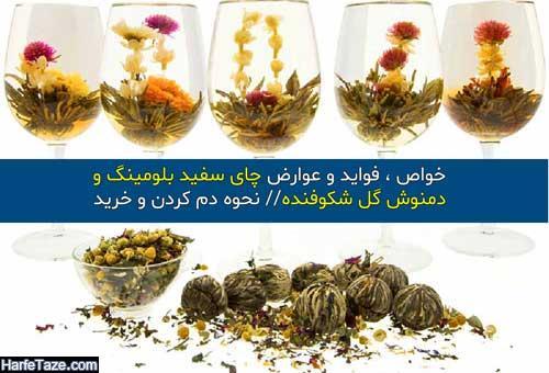 چای بلومینگ و دمنوش شکوفنده چیست و چه خاصیتی دارد؟ +نحوه دم کردن چای بلومینگ و شکوفنده