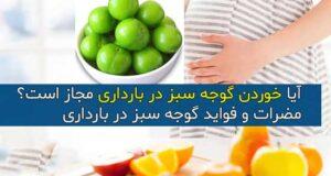 آیا خوردن گوجه سبز در بارداری مجاز است؟ + فواید و مضرات در بارداری