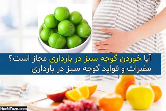آیا خوردن گوجه سبز در بارداری مجاز است؟ + فواید و مضرات برای زنان باردار