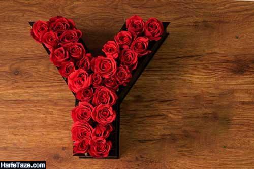 عکس پروفایل حرف y در باکس گل