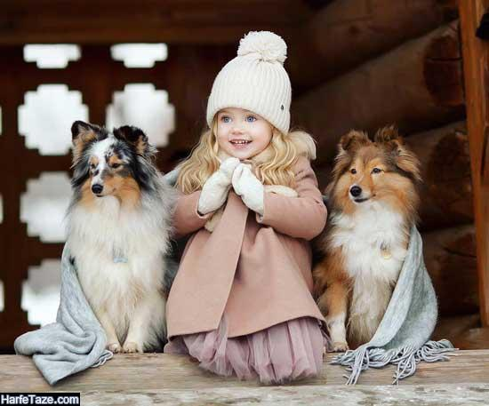 عکس های بامزه و دیدنی از سگها