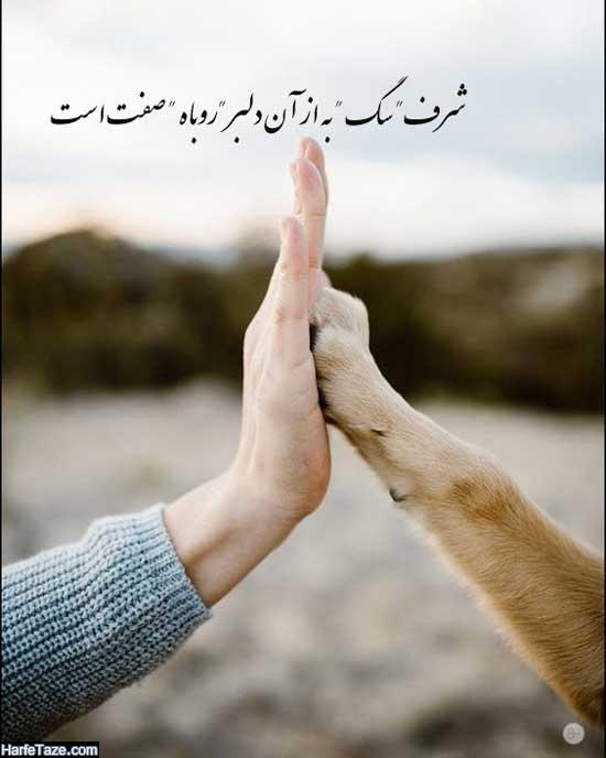 تصاویری درباره وفاداری